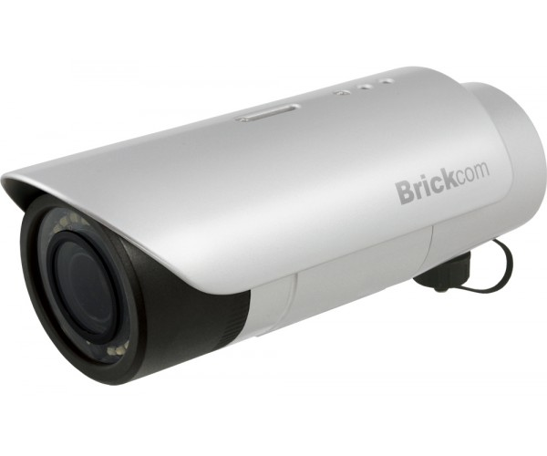 BRICKCOM 2M PROFESSIONAL OUTDOOR BULLET