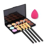 U-beauty 15 Colors Contour Face Cream Makeup Concealer Palette + 4pcs Powder Brushes With Free Makeup Sponge Blender