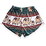 Lookatool Women Sexy Hot Pants Summer Casual Shorts High Waist Short Beach (S, Multicolor)