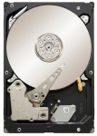 Seagate Constellation ES Series - 3TB Hard Drive